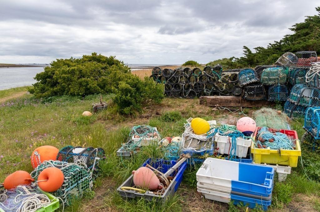 Pêche en casier Finistère Nord